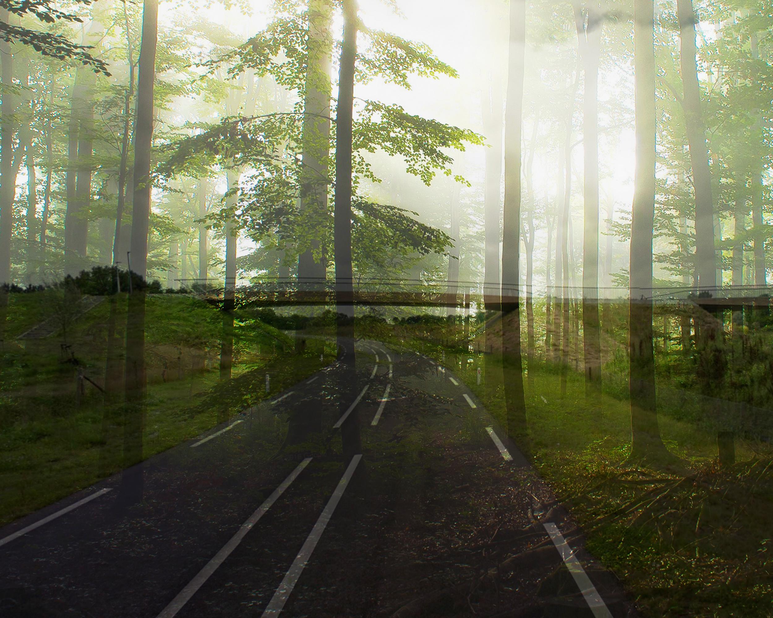 opacity-weg-bos