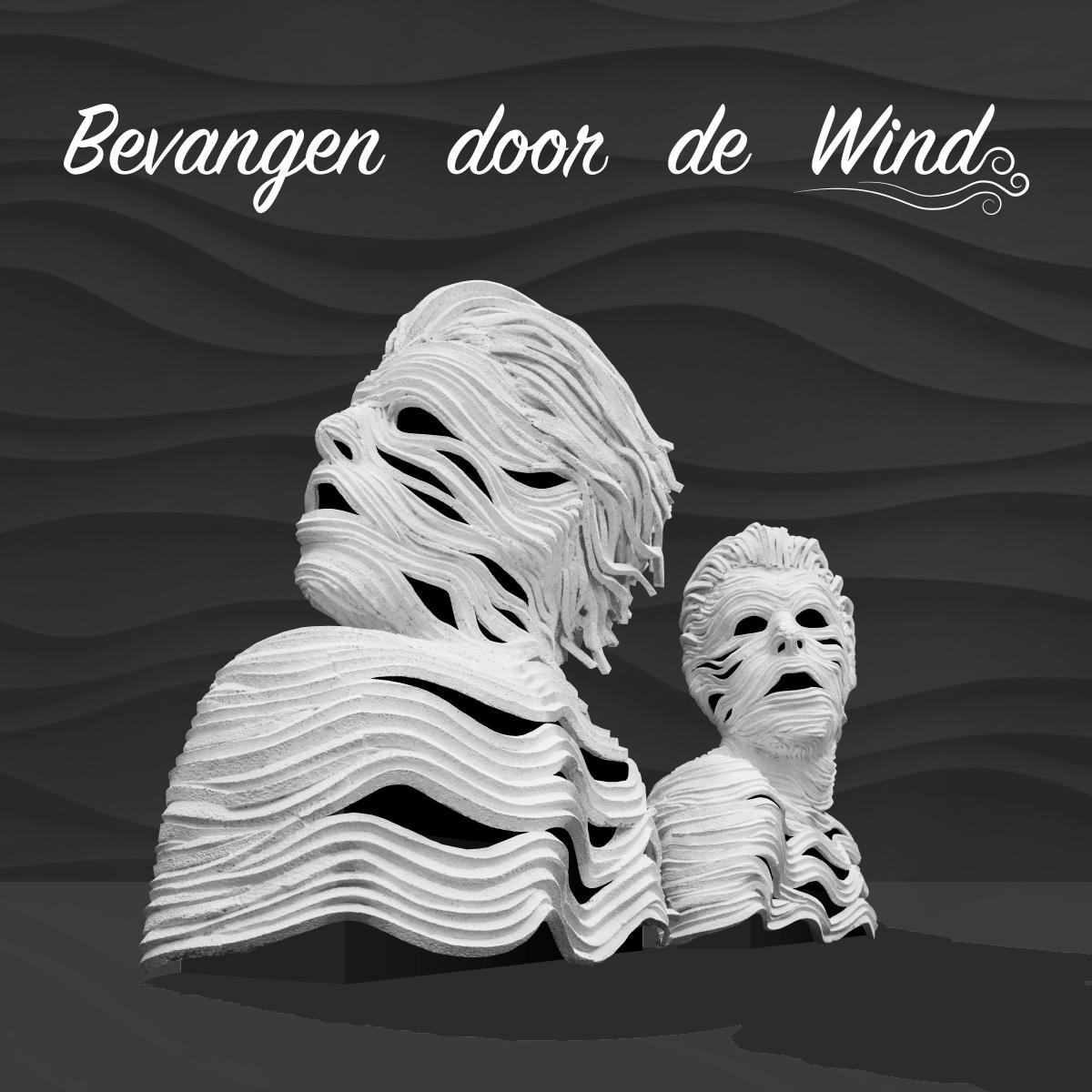 Bevangen-door-de-wind_schuin_voor_Blokje